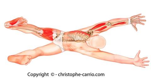 Lombaire osteokhondroz les traitements et les raisons
